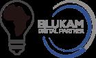 Blukam Digital Partner